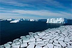 Chamada do Programa FAPESP de Pesquisa sobre Mudanças Climáticas Globais tem resultado