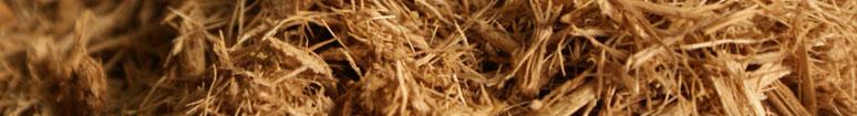 Simpósio de Gaseificação de Biomassa