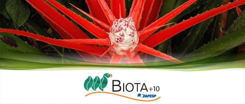 BIOTA-Educação – Bioma Pantanal